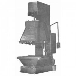 stanok-vertikalno-sverlilnij-mnogoshpindelnij-s-razdvizhnimi-shpindelyami-2g175m